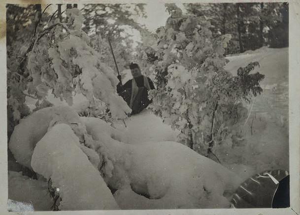 Lähes 400 Gallen-Kallelan valokuvaa vapaaseen käyttöön